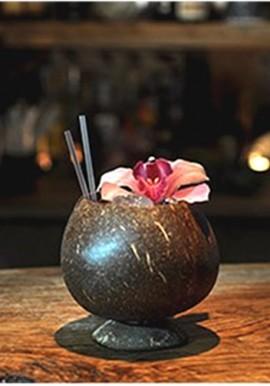 Coconut Cup Lucida
