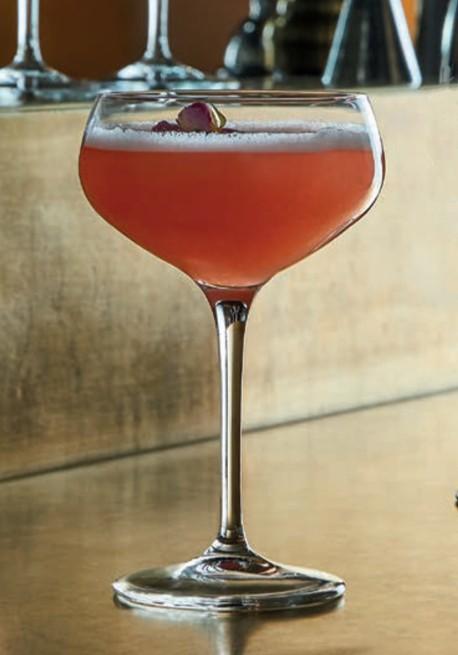 Novecento 25cl (conf. 6pz) Coppa Cocktail