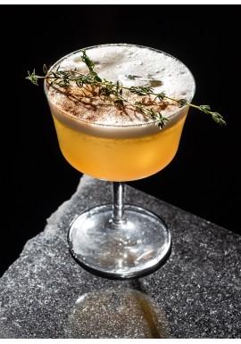 Fizz 22cl (conf. 6pz) Coppa Cocktail